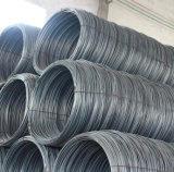ASTM AISI 못 또는 건축을 만들기를 위한 표준 Q235/Q195 철 철사 5.0mm