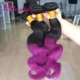 Virgin Remy Ombre 사람의 모발