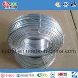 5.5mm SAE1008 de alambre de acero de bajo carbono de alambre