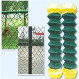 La rete fissa all'ingrosso della rete metallica della maglia di collegamento Chain/ha galvanizzato/rete metallica usata del PVC