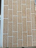 Painel de fachada de fachada / Painel em relevo / núcleo de poliuretano (PUR)