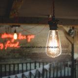 Filament boîtier en verre clair de l'ampoule LED E27, 3W