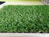 잔디를 중국제 정원사 노릇을 하는 대중적인 판매