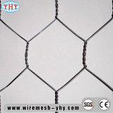 ' frontière de sécurité hexagonale de Ploutry de longévité galvanisée par électro de la largeur 4