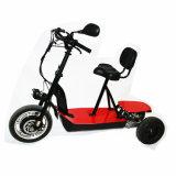 [48ف] [1000و] كهربائيّة درّاجة ثلاثية ثلاثة عجلات [سكوتر]
