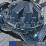 De fluor Gevoerde Klep van het Diafragma van het Type van Waterkering van het Handwiel