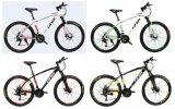 """21 속도 Shimano 경기 대회 20 """" /24의 """" /26의 """" 알루미늄 합금 산악 자전거 (유럽 질 수준)"""