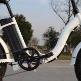 """48V 500Wの卸売価格20の""""脂肪質のタイヤの電気自転車のバイク"""