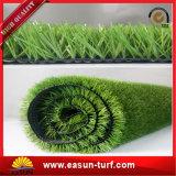 Gras van de Fabrikant van China het Kunstmatige Plastic voor het Modelleren