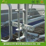 Дешевые цены в Китае оборудование для животноводства Farrowing ящик