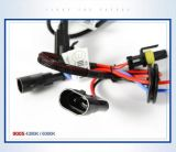 Cnlight 9004/9005/9006/9007/9012の12V 35With55Wによって隠されるキセノン車のヘッドライトの変換キット