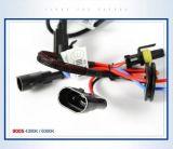Cnlight 9005 12V 35W Selbstzusatzgeräten-VERSTECKTER Xenon-Auto-Scheinwerfer-Konvertierungs-ausbauender Installationssatz