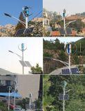 Высокая эффективность 1000 Вт портативный вертикальный ветровой электростанции для домашнего использования