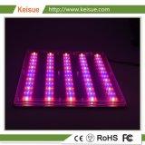 Granja Vertical Keise crecer LED de luz con Full Spectrum