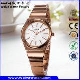 方法偶然の合金OEM/ODMの水晶女性腕時計(Wy-104B)