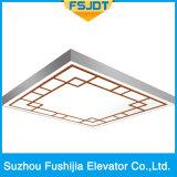 De Goedgekeurde Lift Passanger van de Capaciteit 1000kg van Fushijia van Professionele Manufactory ISO14001