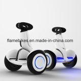 Ninebotの1000Wの小型プラグの自己のバランスのスクーター