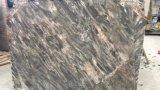루이 부엌을%s 회색 마노 대리석 석판 또는 목욕탕 또는 벽 또는 지면