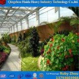 Wasserkultursystem mit Fabrik-Preis-Plastikfilm-Gewächshaus für Blumen
