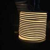 Maison moderne décoration gradateur de lumière néon LED Flex tube Néon de Lumière blanc chaud