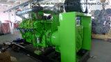450kw Biogas Generator/CHP