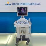 Couleur Doppler de scanner d'ultrason de Digitals au prix bon marché