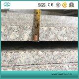 중국 Bainbrook 브라운 Tile, Copper 브라운, Sale를 위한 G664 Granite