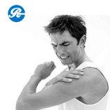 Piroxicam para a artrite humana Piroxicam (36322-90-4)