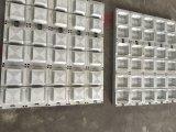 Muffa di plastica del cassetto dell'uovo della muffa del piatto del contenitore di contenitore di alimento della casella di pranzo della gomma piuma di PS