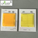 LED de sabugo 220VAC sem necessidade o Condutor LED