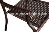 옥외/정원/안뜰 등나무 주조 알루미늄 의자 HS3039c