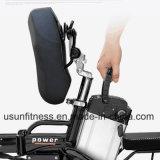 O veículo eléctrico do transporte e a bicicleta elétrica com removem a bateria