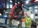 Стан шарика машины обогащения руды хорошего качества меля