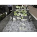 Vehículo y lavadora superventas de la burbuja de las frutas