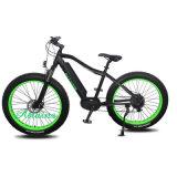 전기 자전거 뚱뚱한 타이어 36V 리튬 건전지 350W 중앙 모터 Electri 자전거