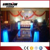 빛나는 아크릴 결혼식 판매에 단계에 의하여 점화되는 단계 플래트홈