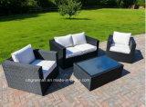 Rattan esterno con la mobilia stabilita del sofà del giardino di Coversation di combinazione dell'ammortizzatore