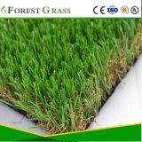 Gras van de Tuin van het Gras van Homebase het Valse (FS)