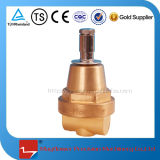 Válvula de controle de pressão de válvula combinada de cilindro de GNL