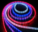 La cuerda (plano de luz LED de 3 hilos) (SRFL-3W)