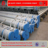 Qualität galvanisierte Rohr-Pferden-Zaun-Panels
