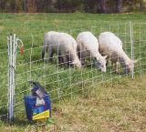 Recinto del bestiame del nodo del giunto di cerniera (WA-028)