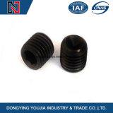 Vis en acier inoxydable DIN916-hexagonale avec point de coupe