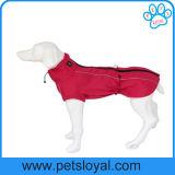 工場贅沢な飼い犬は大きい犬のコートに着せる