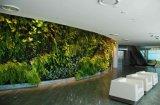 Plantas artificiales verdes de pantalla para decoración de pared colgante