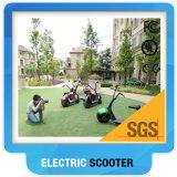 Pneu électrique respectueux de l'environnement de graisse de scooter du scooter 800W Citycoco de Harley