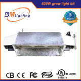 Hydroponics Electronic Lastre 2 * 315W 630W CMH Lighting Ballast Fixture for Lamps