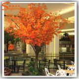 Albero di acero falso artificiale della vetroresina calda di vendita per la decorazione di autunno