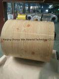 La hoja galvanizada para la pared, hierro de hoja galvanizado, la bobina de acero galvanizada PPGI/Gi frío acanaló