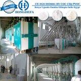 Planta de moedura da farinha de trigo para Argélia Etiópia Egipto